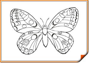 Раскраски онлайн распечатать бесплатно для мальчиков